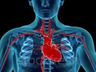 Оздоровление сердца